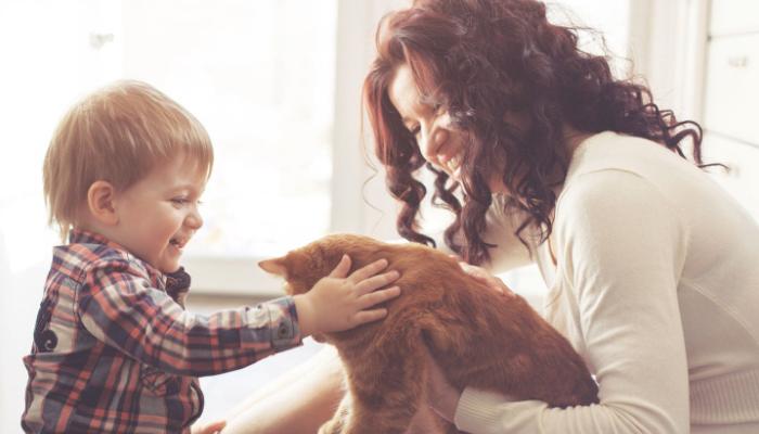 Gatito con una familia