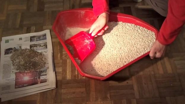 bandeja de arena para gatos casera