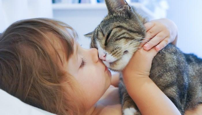 Niña acariciando a un gato