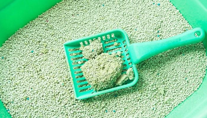 arena que elimina los excrementos del gato