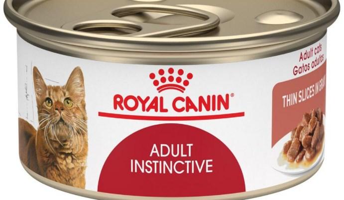 productos nutritivos para gatos