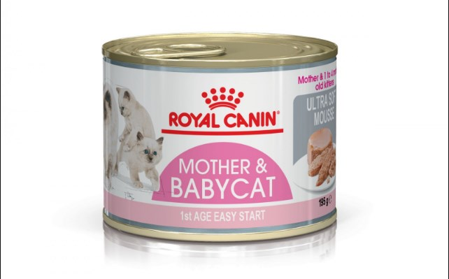 Comida para Gatos Royal Canin