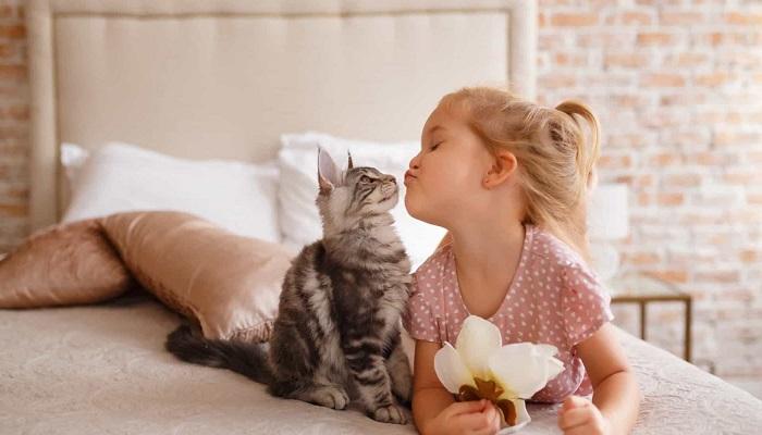 una linda niña con su gatito en el sofá.